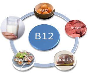 B12 Vitamini Nelerde Bulunur?